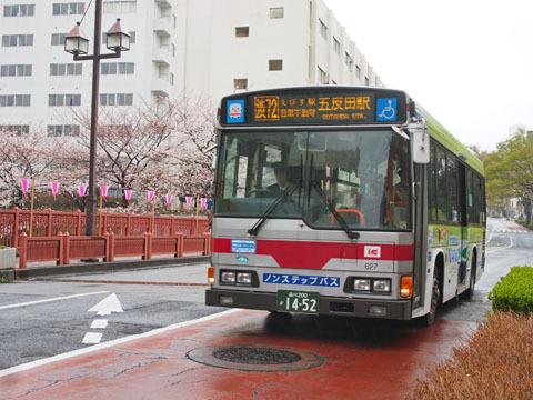 shibu72.jpg