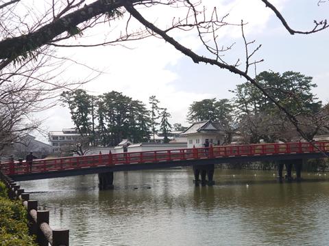 shiro_0303z.jpg